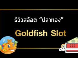 รีวิว สล็อต ปลาทอง
